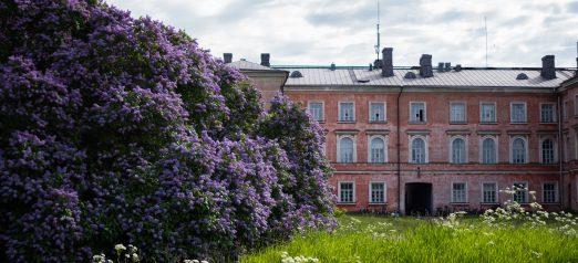 Vaasan kasarmi -asuinrakennus kesällä. Etualalla kukkivia syreenejä.