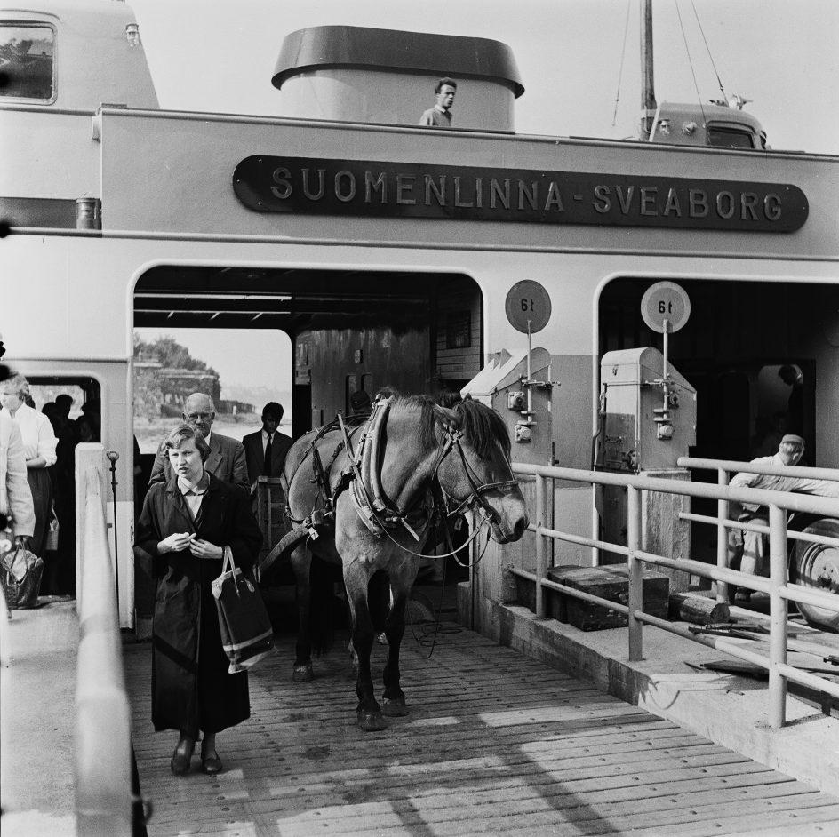 Ihmisiä ja hevonen poistumassa Suomenlinnan lautasta.